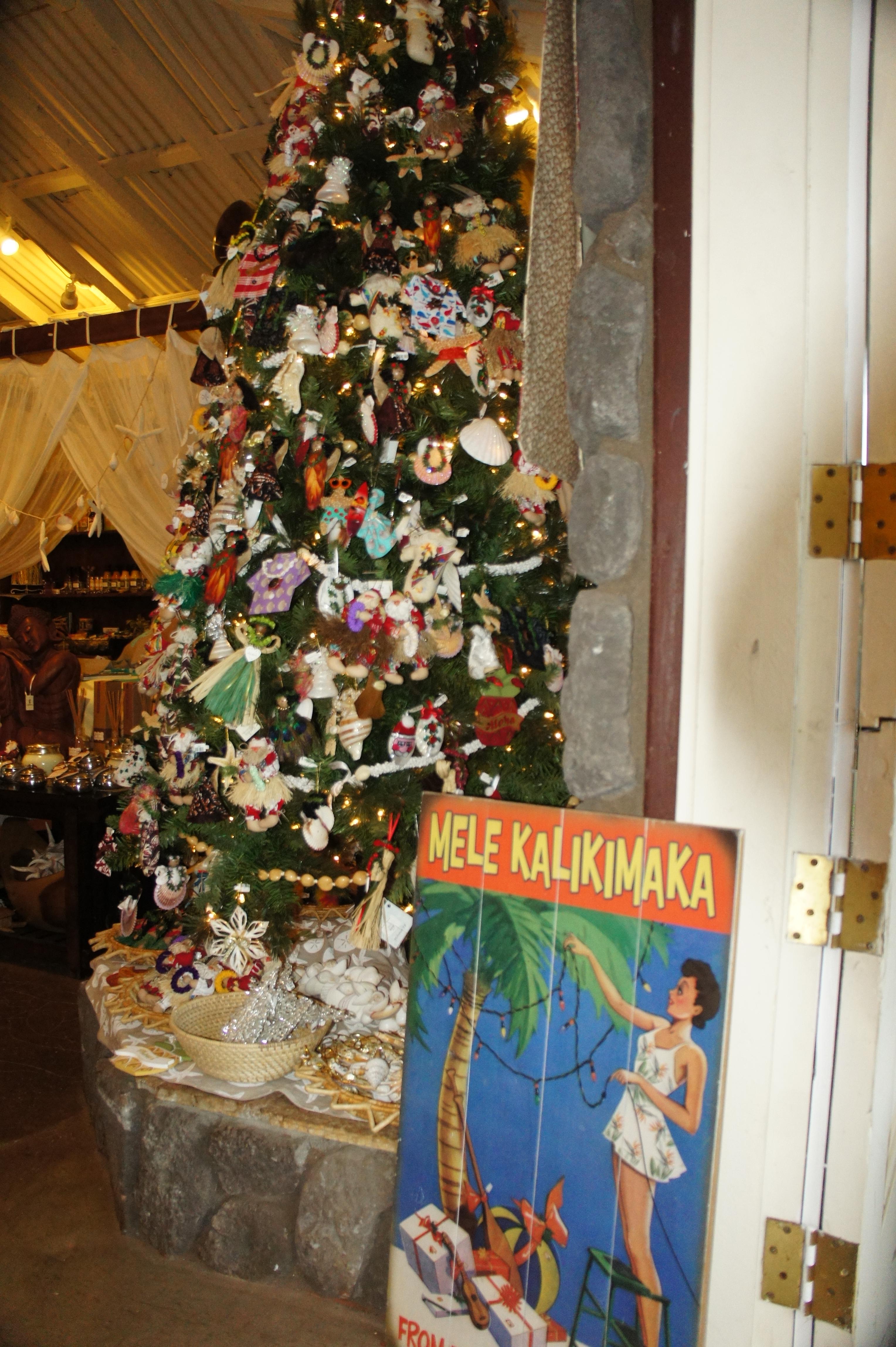 Hawaiian Christmas Tree One Week On Maui
